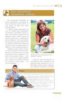 Дрессировка и воспитание собаки — фото, картинка — 15