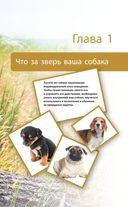 Дрессировка и воспитание собаки — фото, картинка — 9