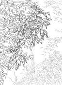 Коралловый риф. Раскраска-антистресс для творчества и вдохновения — фото, картинка — 3