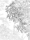 Коралловый риф. Раскраска-антистресс для творчества и вдохновения — фото, картинка — 4