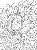 Коралловый риф. Раскраска-антистресс для творчества и вдохновения — фото, картинка — 8