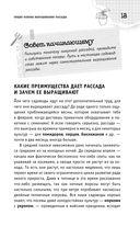 Успешная рассада от Павла Траннуа — фото, картинка — 14