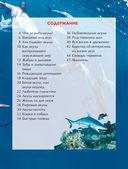 Акулы — фото, картинка — 1