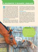 Большая энциклопедия. Лошади и пони — фото, картинка — 2