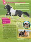 Большая энциклопедия. Лошади и пони — фото, картинка — 13