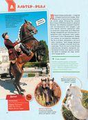 Большая энциклопедия. Лошади и пони — фото, картинка — 14
