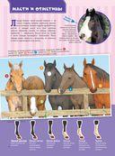 Большая энциклопедия. Лошади и пони — фото, картинка — 4