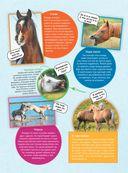 Большая энциклопедия. Лошади и пони — фото, картинка — 9