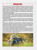 Современное оружие и боевая техника — фото, картинка — 3