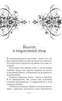 Магия безумия — фото, картинка — 7