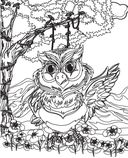 Птицы. Раскраски из сказки — фото, картинка — 1