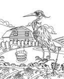 Птицы. Раскраски из сказки — фото, картинка — 3
