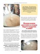 Любимые русские пироги — фото, картинка — 8