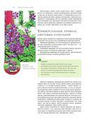 Секреты идеального сада от Ольги Вороновой — фото, картинка — 14
