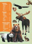 Большие и маленькие животные — фото, картинка — 3