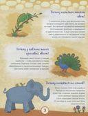 Почему лев - царь зверей? Интересные факты о диких животных — фото, картинка — 2