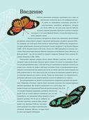 Особенная раскраска: Экзотические бабочки — фото, картинка — 3
