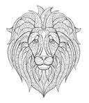 В царстве зверей — фото, картинка — 4