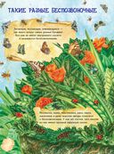 Большая книга о насекомых и не только — фото, картинка — 1