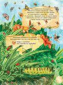 Большая книга о насекомых и не только — фото, картинка — 2