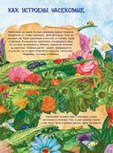 Большая книга о насекомых и не только — фото, картинка — 3