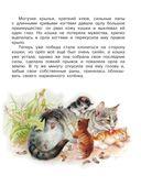 Книга для внеклассного чтения. 3 класс — фото, картинка — 9