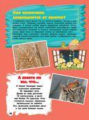 Большая копилка тайн для почемучек — фото, картинка — 12