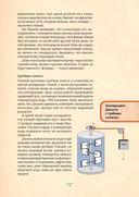 Вся физика в 50 экспериментах. Кот Шрёдингера — фото, картинка — 4
