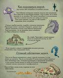 Магическая книга заклинаний — фото, картинка — 7