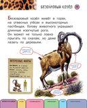 Все животные с крупными буквами — фото, картинка — 9