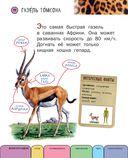 Все животные с крупными буквами — фото, картинка — 10