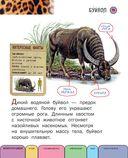 Все животные с крупными буквами — фото, картинка — 11