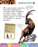 Все животные с крупными буквами — фото, картинка — 13