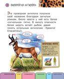 Все животные с крупными буквами — фото, картинка — 4