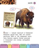 Все животные с крупными буквами — фото, картинка — 5