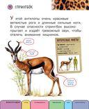 Все животные с крупными буквами — фото, картинка — 6