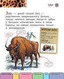 Все животные с крупными буквами — фото, картинка — 7