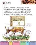 Все животные с крупными буквами — фото, картинка — 8