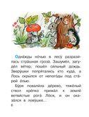 Сказочные истории — фото, картинка — 6